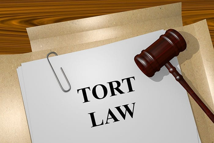 Everything You Will Need to Know About the Federal Tort Claims Act